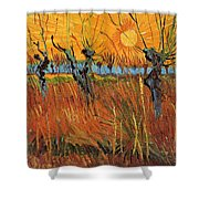 Willows At Sunset Shower Curtain