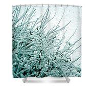 Winter Wonderland In Switzerland Shower Curtain