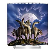 3 Wolves Mooning Shower Curtain by Jerry LoFaro