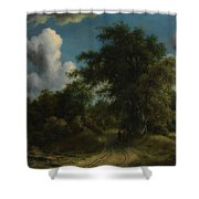 Woodland Road Shower Curtain