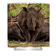 Zambia Shower Curtain