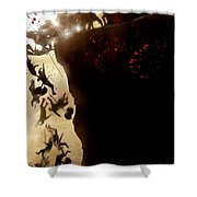 300 2006 Shower Curtain