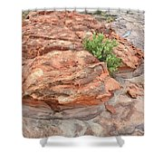 Colorful Sandstone In Valley Of Fire Shower Curtain