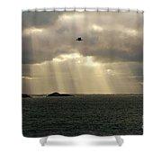 Marblehead Ma Shower Curtain