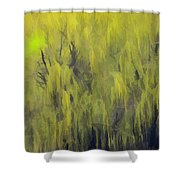 331 Shower Curtain