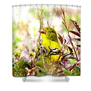 3395 - Tanager Shower Curtain