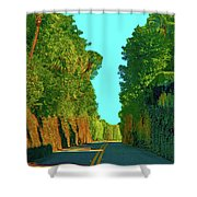 34- Enchanted Highway Shower Curtain