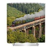 34067 Tangmere Crossing St Pinnock Viaduct. Shower Curtain