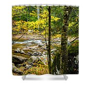 Fall Along Williams River Shower Curtain