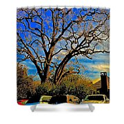 365 012716 Ancient Valley Oak And Parking Shower Curtain
