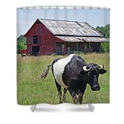 37 More Miles Shower Curtain