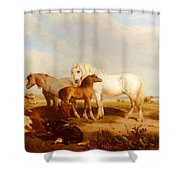 Willis Henry Brittan Horses And Cattle On The Shore Henry Brittan Willis Shower Curtain