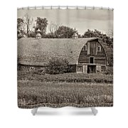 38409 - 07-15 Shower Curtain
