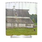 386th Dairy Panorama Shower Curtain