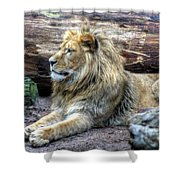 Hannover Zoo Germany Shower Curtain