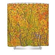 3983 Autumn Pleasure Shower Curtain