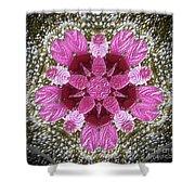 3d Pink Purple Mandala Painting Shower Curtain