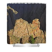 3d10316 Kneeling Camel Viewpoint 2 Shower Curtain