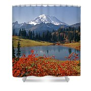 3m4824 Tipsoo Lake And Mt. Rainier H Shower Curtain