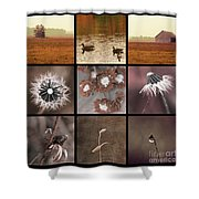 3x3 Brown Shower Curtain