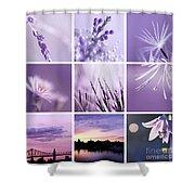 3x3 Purple Shower Curtain