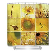 3x3 Yellow Shower Curtain