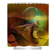 4-3-10aa Shower Curtain