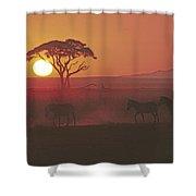 African Sunrise Shower Curtain