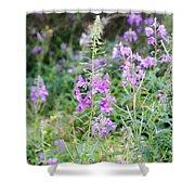 Alpine Wildflower Shower Curtain
