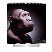 Australopithecus Shower Curtain