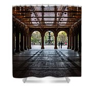 Bethesda Terrace Shower Curtain