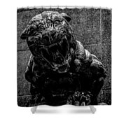 Black Panther Statue Shower Curtain