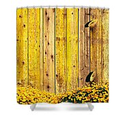 California Golden Poppies Eschscholzia Shower Curtain