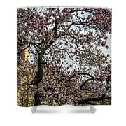 Central Park Spring Shower Curtain