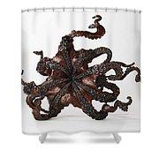 Cephalopod Shower Curtain
