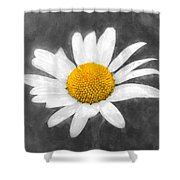Chamomile Watercolor Shower Curtain