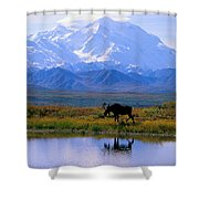 Denali National Park Shower Curtain