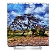 Desertic Tree Shower Curtain