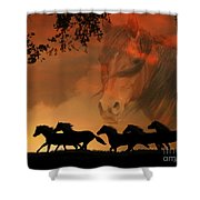 4-ever Free Shower Curtain