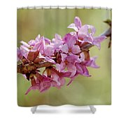 February Daphne Shower Curtain