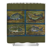 4 Fishes Shower Curtain