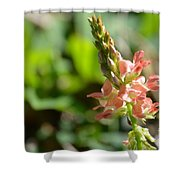 Flor Silvestre Shower Curtain