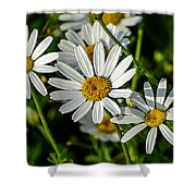 Flower Portrait Shower Curtain