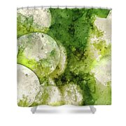 Green Grapes Close Up In Napa Valley Ready To Be Made Into Wine Shower Curtain
