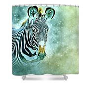 Grevys Zebra, Samburu, Kenya Shower Curtain