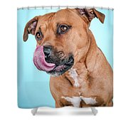 Gripper Shower Curtain