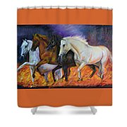 4 Horses Of The Apocalypse Shower Curtain
