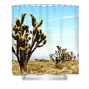 Joshua Tree Desert Shower Curtain