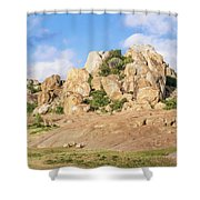Landscape In Tanzania Shower Curtain