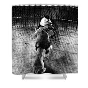 Lion Tamer, 1930s Shower Curtain